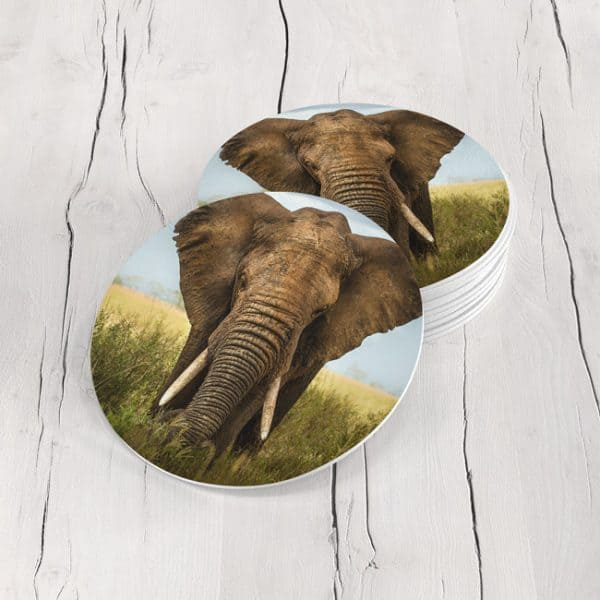 Porta Vasos Redondo Elefante 03