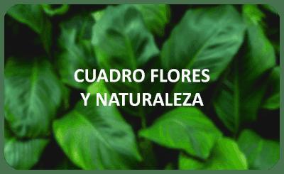 cuadros flores y naturaleza 2